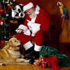 圣诞老人壁纸秀
