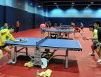 [高清组图]乒乓球:中国队在奥地利备战世乒赛